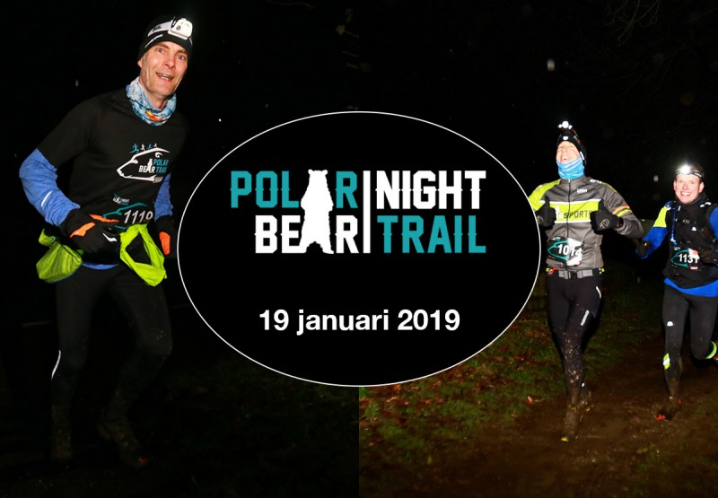 Polar Night Bear Trail