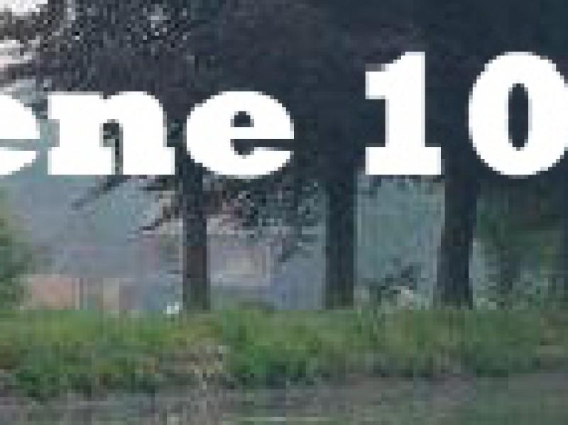 Groene 10 mijl van Bree