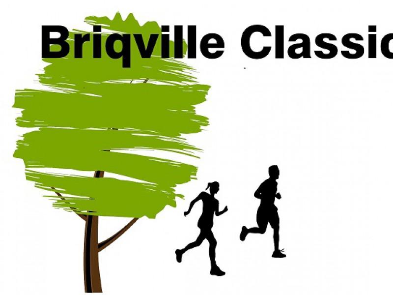 Briqville Run 2019